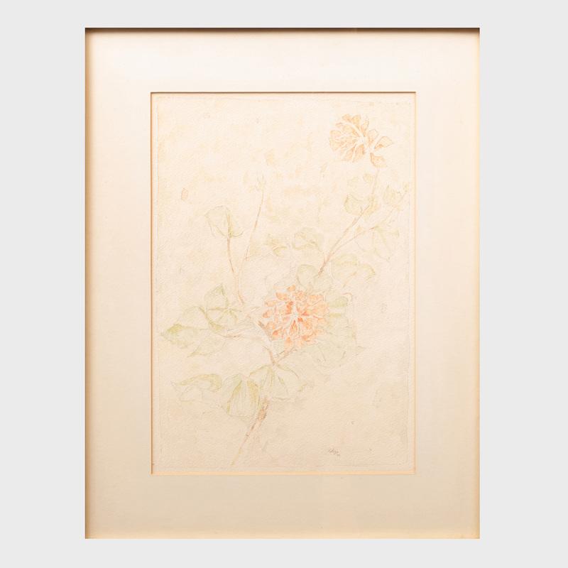 Charles Seliger (1926-2009): Geraniums