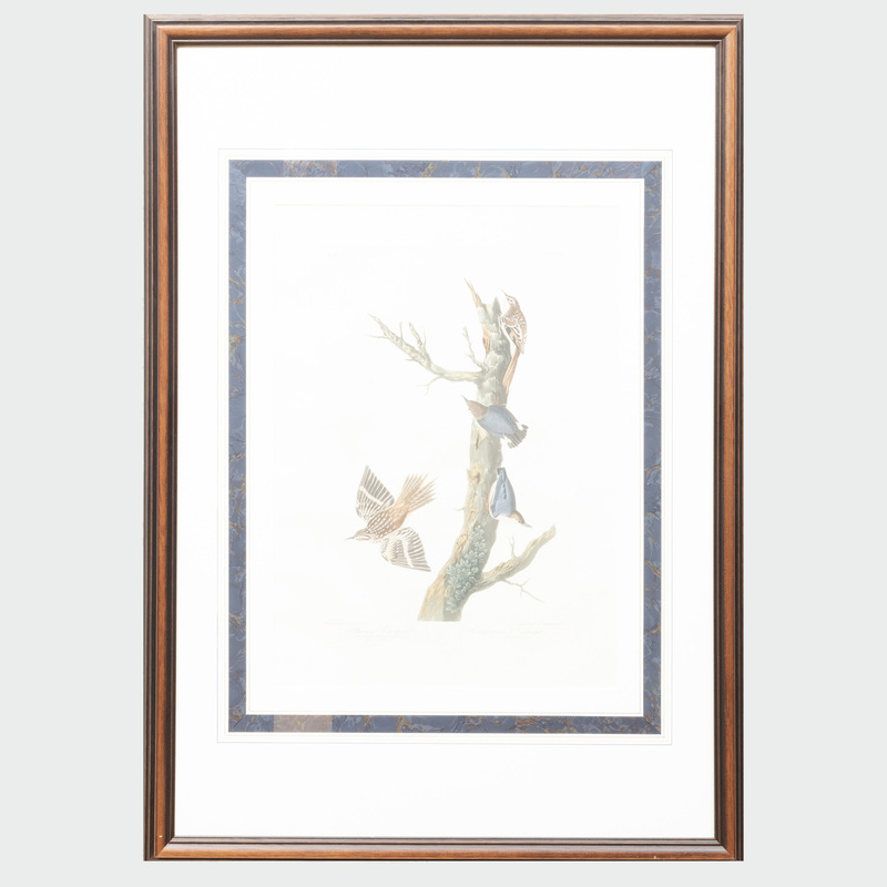 John James Audubon (1785-1851): Brown Creeper and California Nuthatch