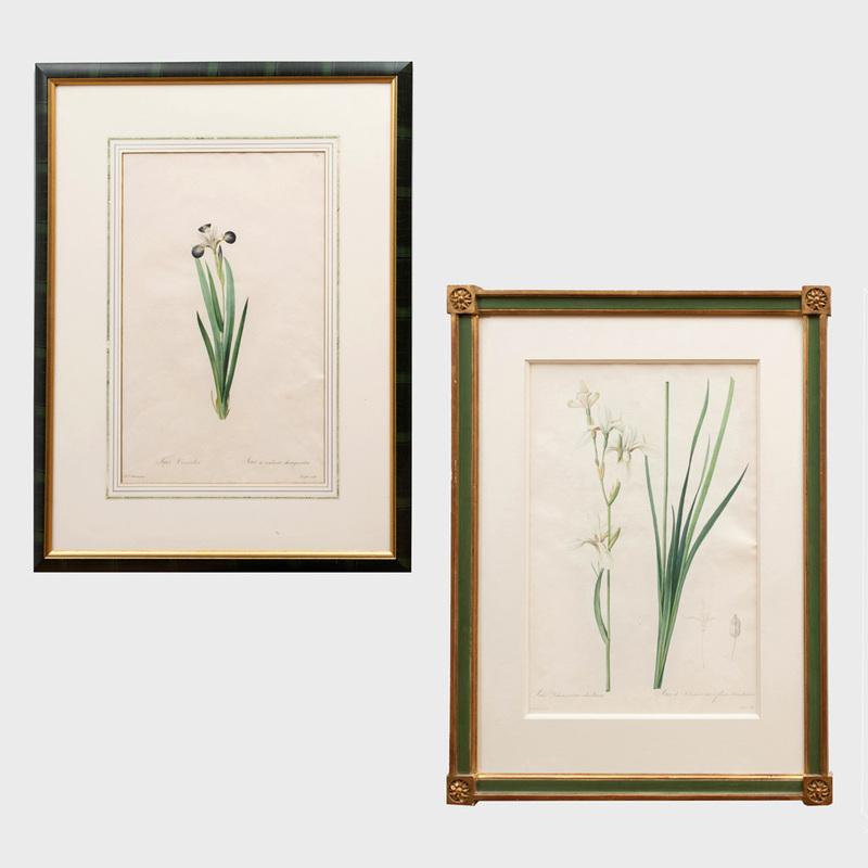 Pierre-Joseph Redouté (1759-1840): Iris Sibirica; and Iris Versicolor