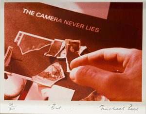 MICHAEL PEEL (b. 1940): THE CAMERA NEVER LIES
