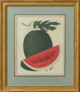 ANGLO-CHINESE SCHOOL: WATERMELON; PINEAPPLE; GRAPEFRUIT/POMELLO; AND FINGER-CITRON