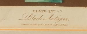 GEORGE BROOKSHAW (1751-1832): POMONA BRITANNICA: PLATES XLIV; LXXXIX; XI; LV; AND LV
