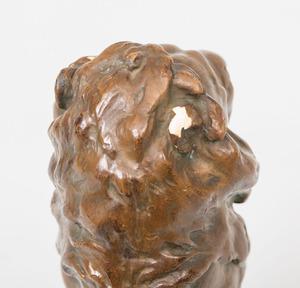 Composition Figure of a Lion