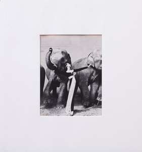 RICHARD AVEDON (1923-2004): DOVIMA WITH ELEPHANTS, (SMALL FORMAT)