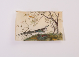 CHINESE SCHOOL: BIRD IN LANDSCAPE