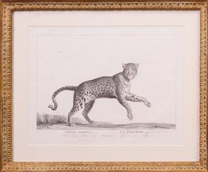 AFTER CHARLES-LAURENT DE MARÉCHAL (1807-1887): LA PANTHÈRE, FROM DE LA MÉNAGERIE DU MUSÉUM NATIONAL D'HISTOIRE NATURELLE, PLATE 10