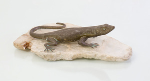 FRENCH BRASS LIZARD ON SPECIMEN BASE