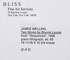 JAMES WELLING (b. 1951): TWO WORKS BY SHERRIE LEVINE
