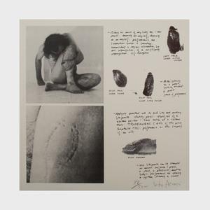 Various Artists: Portfolio