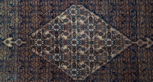 Feraghan Medallion Carpet