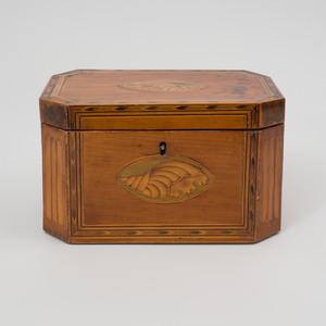 George III Satinwood and Fruitwood Marquetry Tea Caddy
