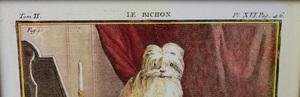 20th Century School:  Le Bichon; Le Chien Lion