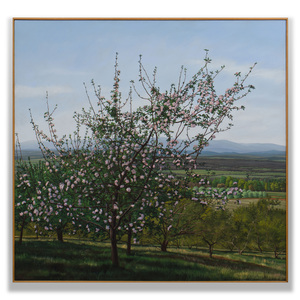 William Sullivan (b. 1950): Cherry Orchard