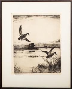 Frank W. Benson (1862-1951): Two Black Ducks