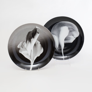 Pair of Robert Mapplethorpe Photographic Printed Porcelain 'Calla Lily' and 'Flower' Plates, for Swid Powell