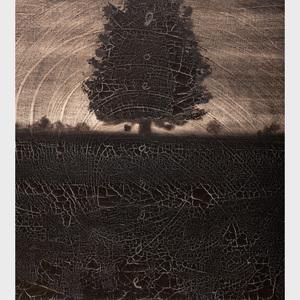 Joe Andoe (b. 1955): Untitled (Tree)