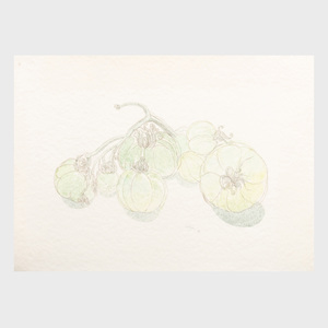 Charles Seliger (1926-2009): Green Tomatoes