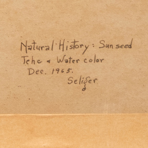 Charles Seliger (1926-2009): Natural History: Sunseed #7; and Natural History: Sunseed #10