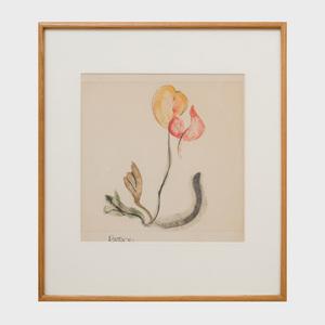 Theodoros Stamos (1922-1997): Four Flowers