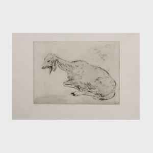 Mordecai Moreh (b. 1938): A Goat