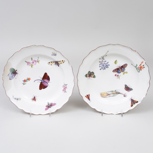 Pair of Derby Porcelain Plates Decorated with Insects