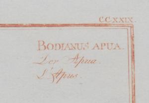Marcus Elieser Bloch (1723-1799): Histoire Naturelle des Poissons: Four Plates