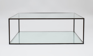 Dux Alberto Painted Metal and Glass Low Table
