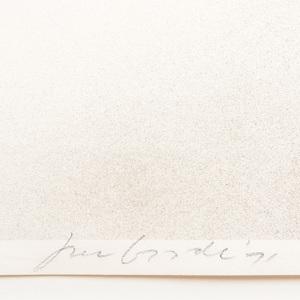 Joe Goode (b. 1937): Untitled