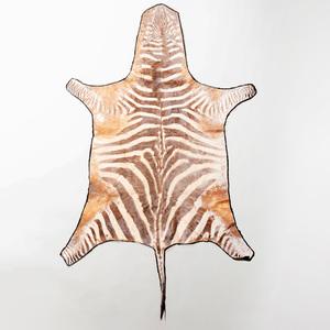 Small Zebra Skin Rug