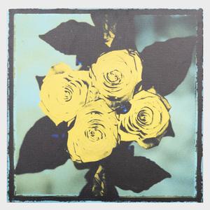 Gilles Tondini: Yellow Roses
