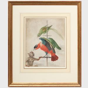 Johannes Bronckhorst (1648-1727): A Parrot, a Macaw, and a Monkey