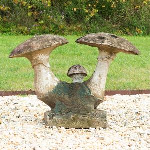 Composition Mushroom Group