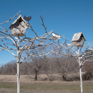 Pair of Painted Metal Trees Surmounted by Tôle Birdhouses