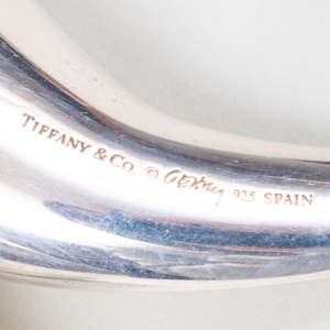 Pair of Tiffany & Co. Frank Gerry Silver Salt and Pepper Fish Form Casters