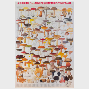 Scandinavian School: Mushrooms